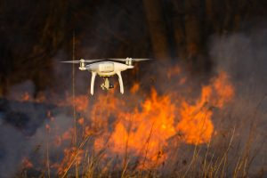 Suppression of forest fires
