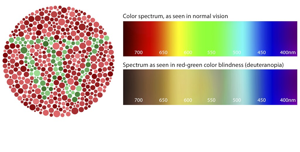 FAA-procedure-for-color-vision-testing